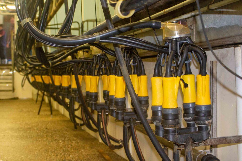 La griffe permet d'assurer le post trempage des trayons et la désinfection des manchons.