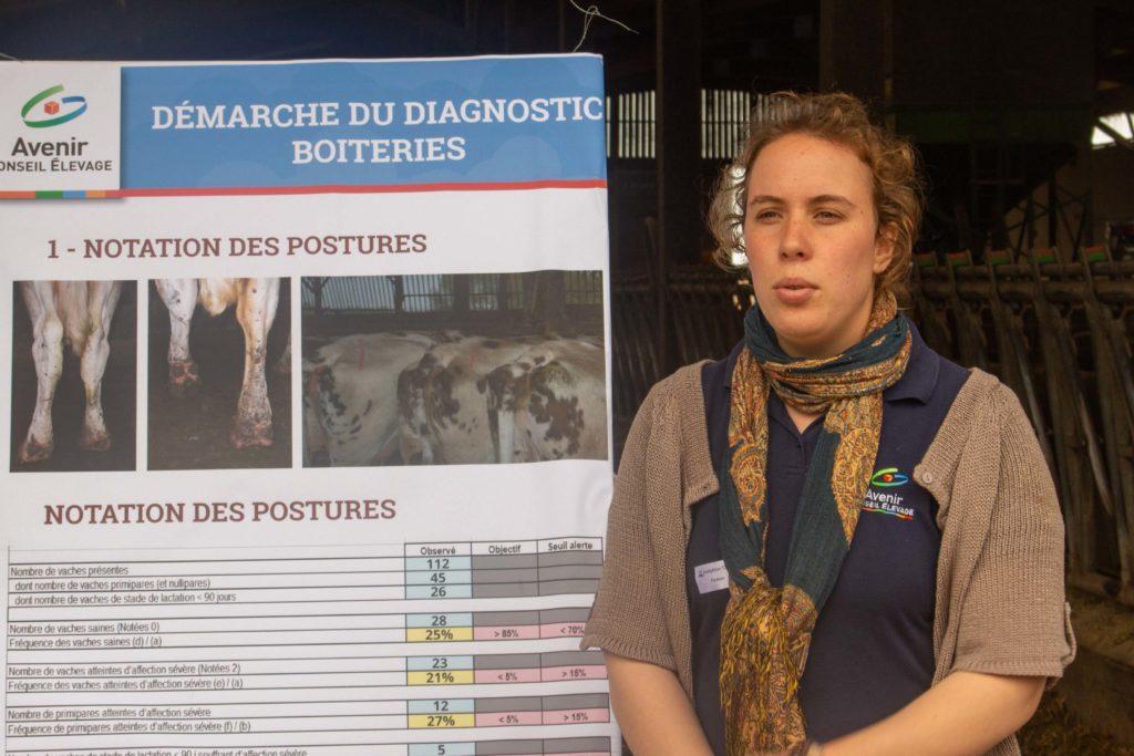 """""""La Mortellaro entraîne la plupart des boiteries dans l'élevage"""""""