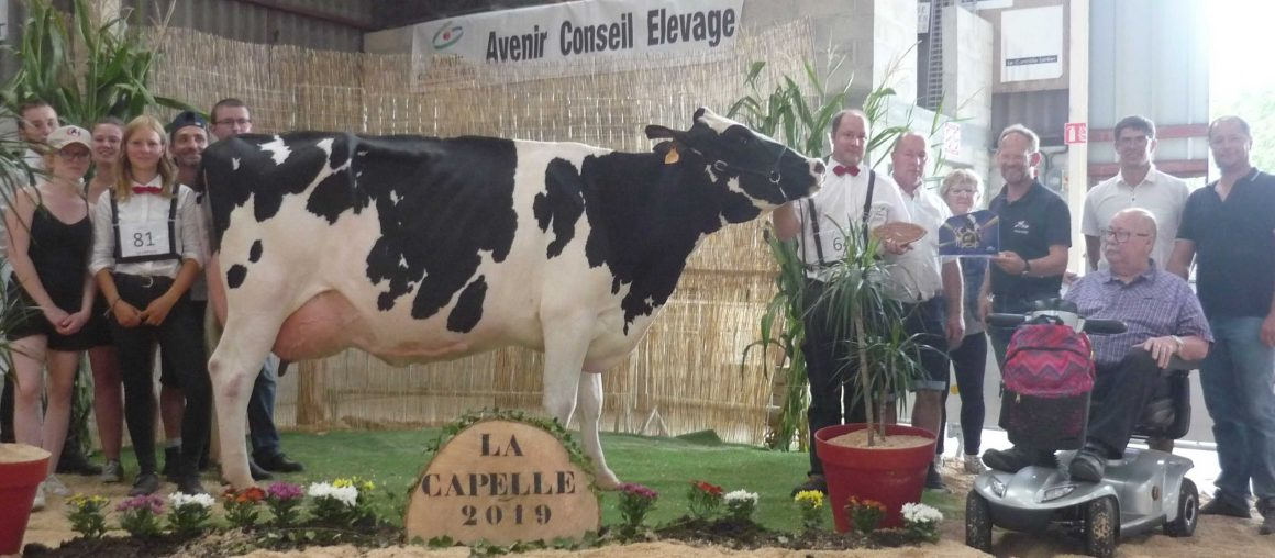Retour sur le concours de La Capelle