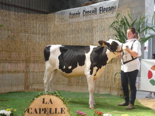selection-LaCapelle--6