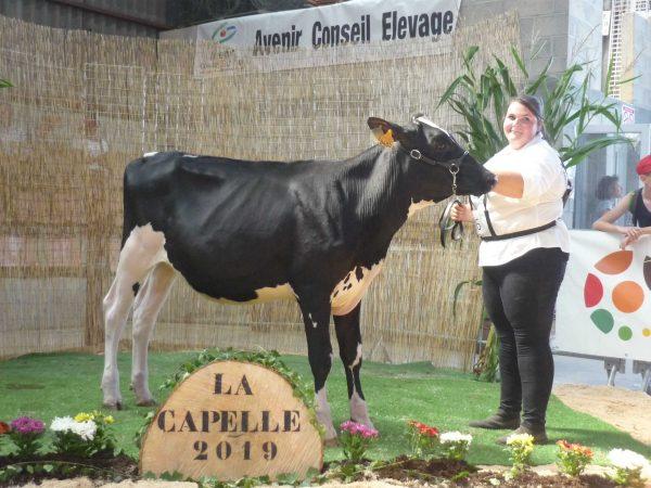 selection-LaCapelle--7