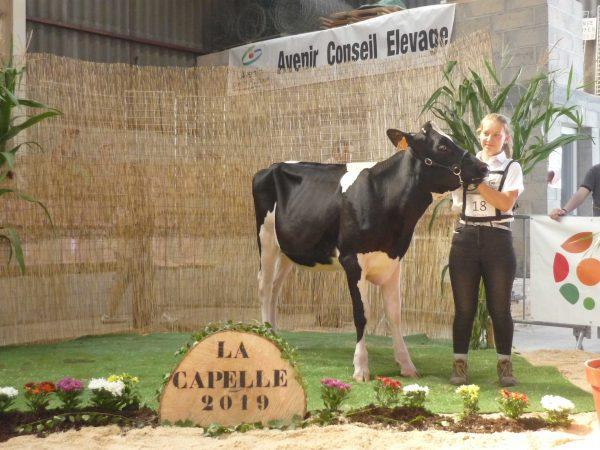 selection-LaCapelle--8