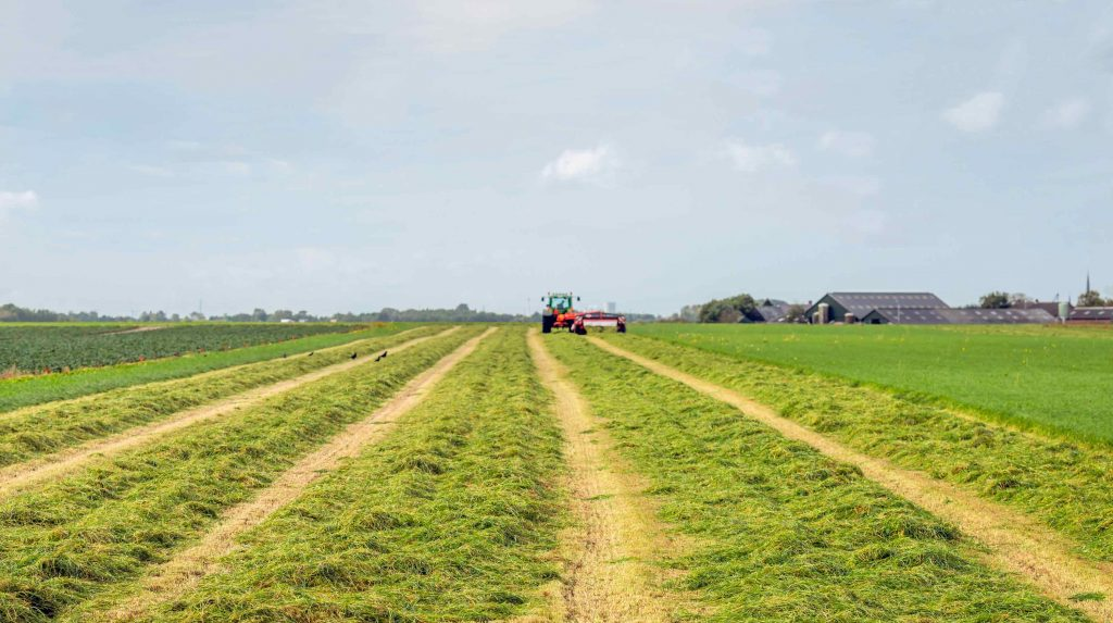 Tracteur fauche l'herbe