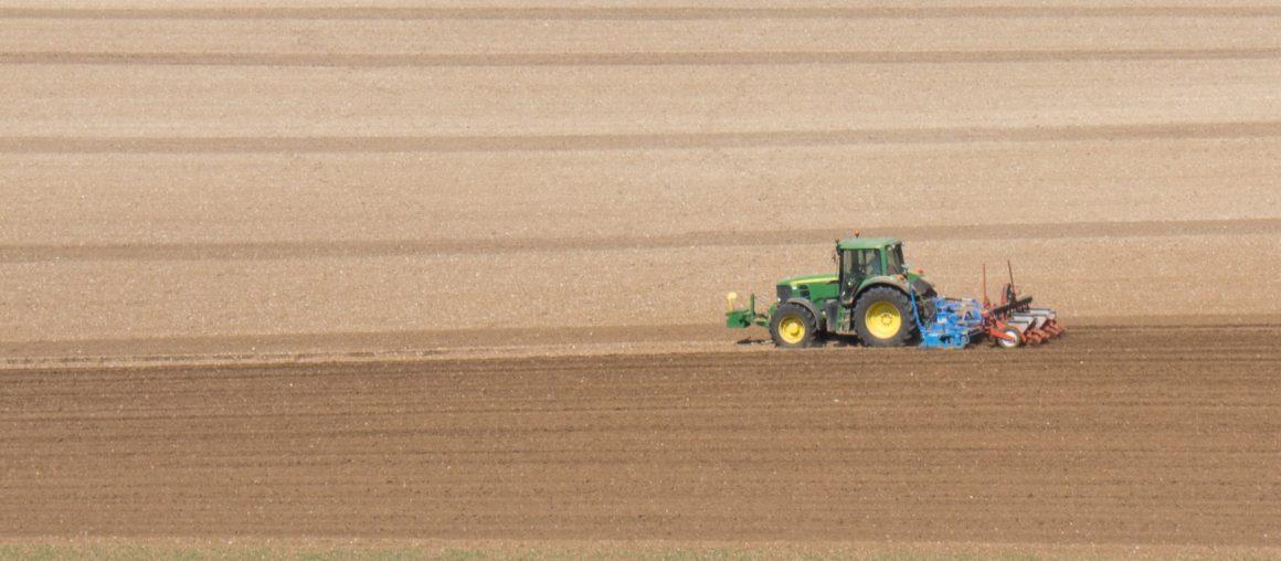Maïs 2021 : des semis à la fraîche