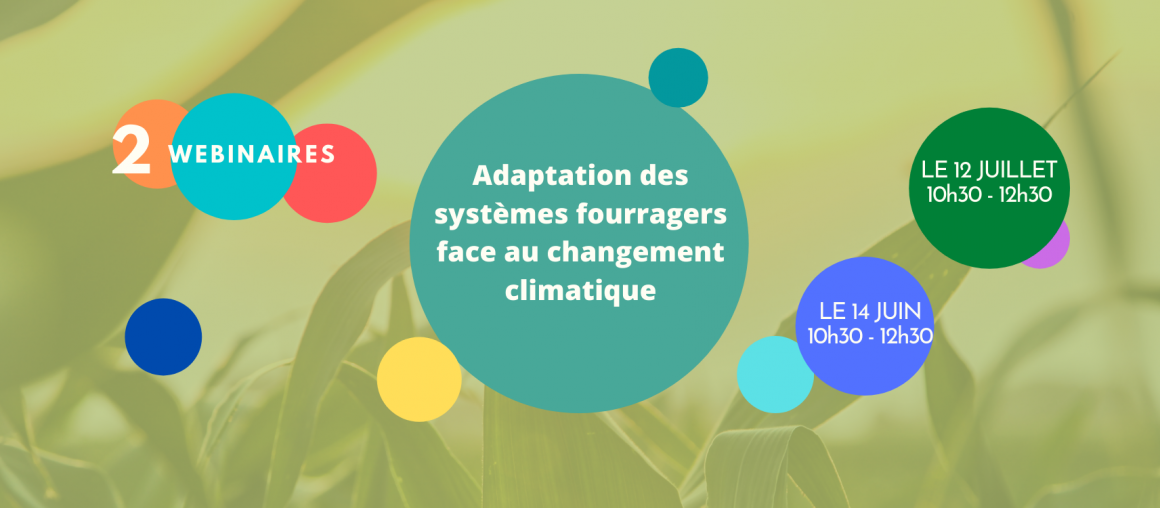Webinaires : Adapter son système fourrager